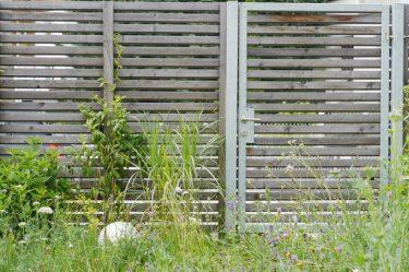 Bild zu Gartenzaun & Sichtschutz
